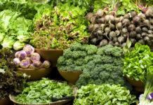verdure con il maggior numero di proteine